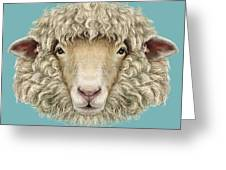 Sheep Portrait. Illustrated Portrait Of Greeting Card