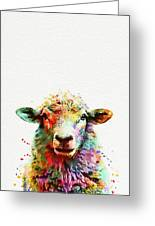 Sheep Portrait Greeting Card