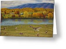 Shenandoah Valley Hawk Greeting Card
