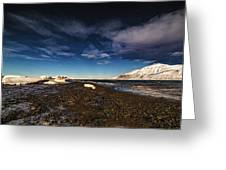 Shoreline With Driftice Greeting Card