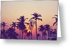 Silhouette Of Palm Trees At Sunset Greeting Card