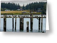 Small Village Along The Columbia River Greeting Card by Mae Wertz