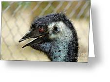 Smiley Face Emu Greeting Card