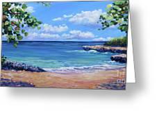 Smith Cove Panoramic Greeting Card