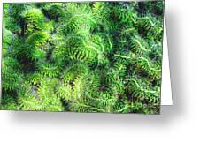 Snake Cactus Greeting Card