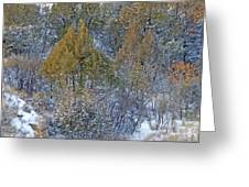 Snow-dusted In West Dakota Greeting Card