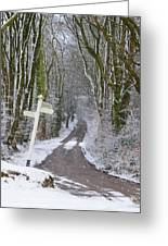 Snow In The Trees Greeting Card