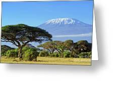 Snow On Top Of Mount Kilimanjaro In Greeting Card