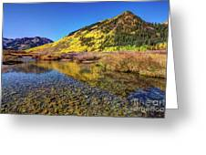 Snowmass Creek Greeting Card