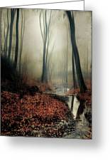 Sounds Of Silence Greeting Card