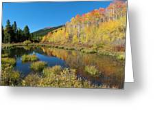 South Elbert Autumn Beauty Greeting Card by Cascade Colors
