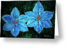 Spring Star Flowers Greeting Card