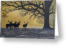 Stags At Dawn Greeting Card