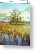 Standing On The Edge Of Evening  Greeting Card