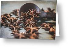 Star Anise 4825 By Tl Wilson Photography  Greeting Card
