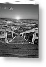 Steps To The Sun  Black And White Greeting Card