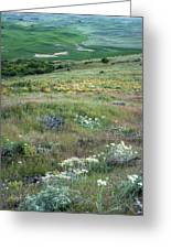 Steptoe Butte View 9276 Greeting Card