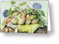 Still Life With Plums, Walnuts And Jasmine Greeting Card