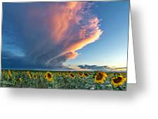 Storm Clouds And Sunflowers  Greeting Card by Rand