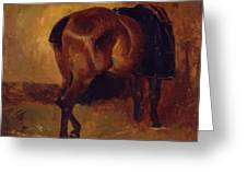 Study For Bay Horse Seen From Behind Greeting Card