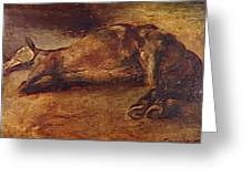 Study For Dead Horse Greeting Card