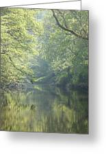 Summer Time River And Trees Greeting Card