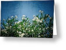 Summer Wildflowers Greeting Card by Carolyn Marshall