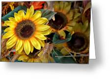 Sunflower Harvest Greeting Card