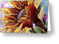 Sunflower In The Sun Greeting Card by Darren Cannell