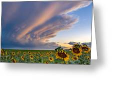 Sunflowers And Storm Clouds Greeting Card by Rand