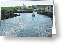 sunlight glistening on water at Eyemouth harbour Greeting Card