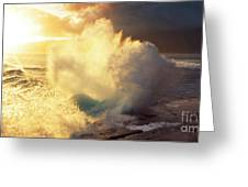 Sunlit Wave - Hawaii Greeting Card by Charmian Vistaunet