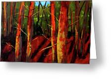 Sunny Forest Landscape Greeting Card