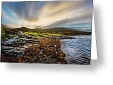 Sunrays At Dawn Along The Coast Greeting Card