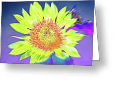 Sunspray Greeting Card