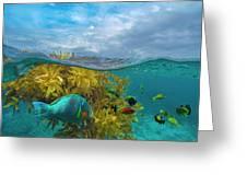 Surf Parrotfish, Damselfish And Basslet Greeting Card