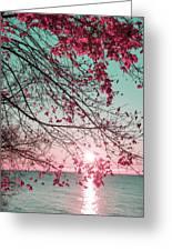 Teal And Fuchsia - Autumn Sunrise Reimagined Greeting Card
