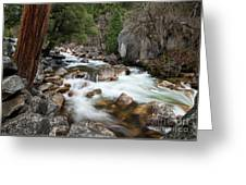 Tenaya Creek, Yosemite National Park Greeting Card