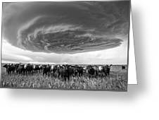 Texas Panhandle Meso Greeting Card by Scott Cordell