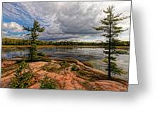 The Artistic Cranberry Bog Greeting Card
