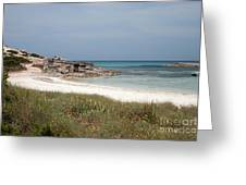 The Boathouse And The Beach Greeting Card