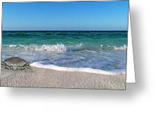 The Crab And The Sea Greeting Card