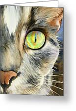 The Eye Of The Kitty Greeting Card