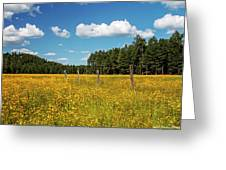 The Field Greeting Card