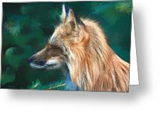 The Fox 235 - Painting Greeting Card