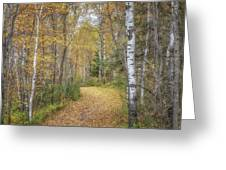 The Golden Path Greeting Card by Susan Rissi Tregoning