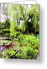 The Lily Pond Trail Greeting Card