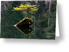 The Little Tree On Fairy Lake 5 Greeting Card