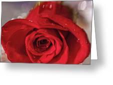 The Magic Of Roses Greeting Card