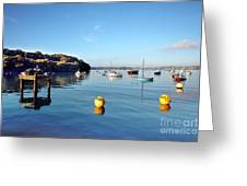The Mylor Dolphin Greeting Card
